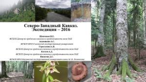 Экспедиция_ Предгорные леса Северо-Западного Кавказа_2016