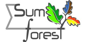 Sum_forest