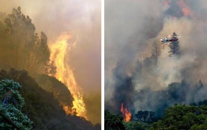 """Мастер-класс """"ГИС-анализ в задачах прогнозирования лесных пожаров и оценки их последствий"""""""