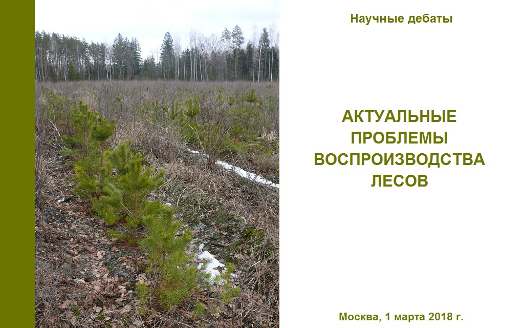 Актуальные проблемы воспроизводства лесов