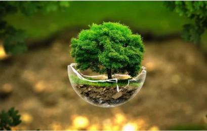 Цикл лекций «Экология для всех»
