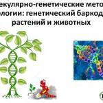 МК_мол-ген методы