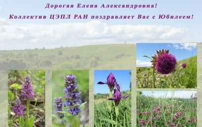 Поздравляем Елену Александровну Ерину с юбилеем!