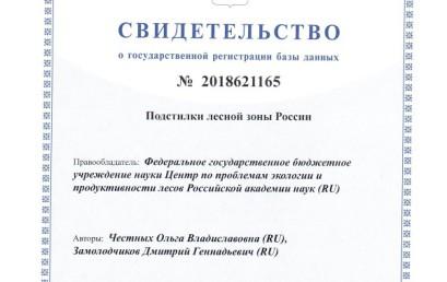 База данных «Подстилки лесной зоны России»