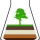 Конференция__Лесные почвы_логотип