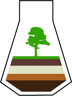"""Продление сроков приема материалов на конференцию """"Лесные почвы и функционирование лесных экосистем"""""""