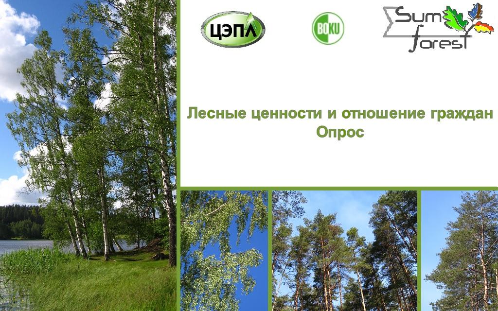 """Опрос """"Лесные ценности и отношение граждан"""""""