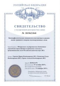 Свидетельство о регистрации БД_Горнова_2019