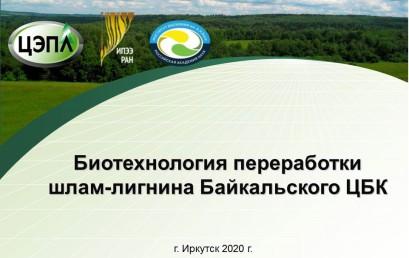 Биотехнология переработки шлам-лигнина Байкальского ЦБК
