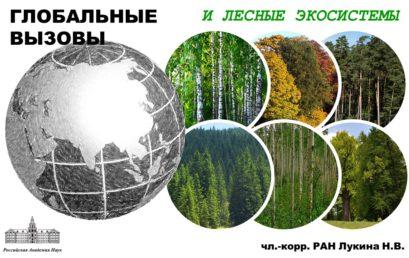 Глобальные вызовы и лесные экосистемы