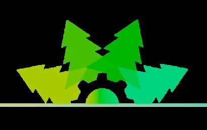 """Новости конференции """"Научные основы устойчивого управления лесами"""""""