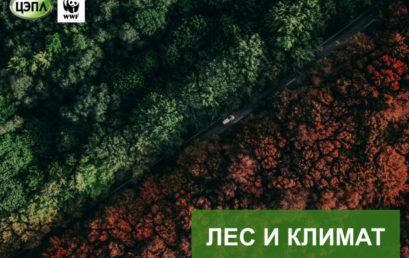 """Цикл лекций """"Изменение климата в России"""""""