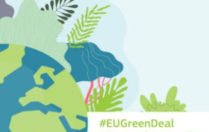 Horizon 2020 European Green Deal call: Forestry. Opportunities for Russian Research & Innovation Entities