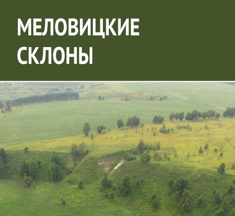 Памятник природы «Меловицкие склоны»: структура и динамика растительного покрова