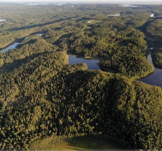 Cеминар «На пути к 26 Конференции Сторон РКИК ООН: роль российских лесов и биоэкономики»