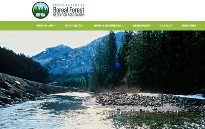 Конференция международной ассоциации исследователей бореальных лесов (IBFRA)